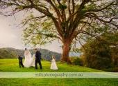 Wedding Photography Maleny Manor