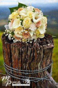 Wedding Photographer Maleny