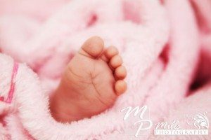Newborn Photography Sunshine Coast