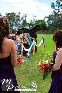 wedding photography eagle ring delivery