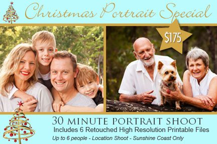 Christmas Family Portrait Special